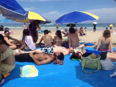 Beach_800x600
